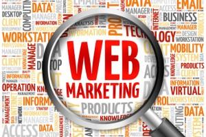 Web stranka prieskum